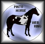 Welcome to the Pinto Horse Web-Ring Homepage